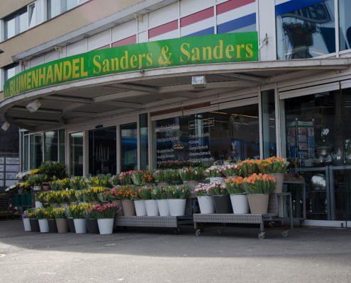 Sanders & Sanders